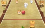 Cat Bowling
