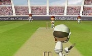 Flash Cricket 2