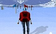 Slalom Ski